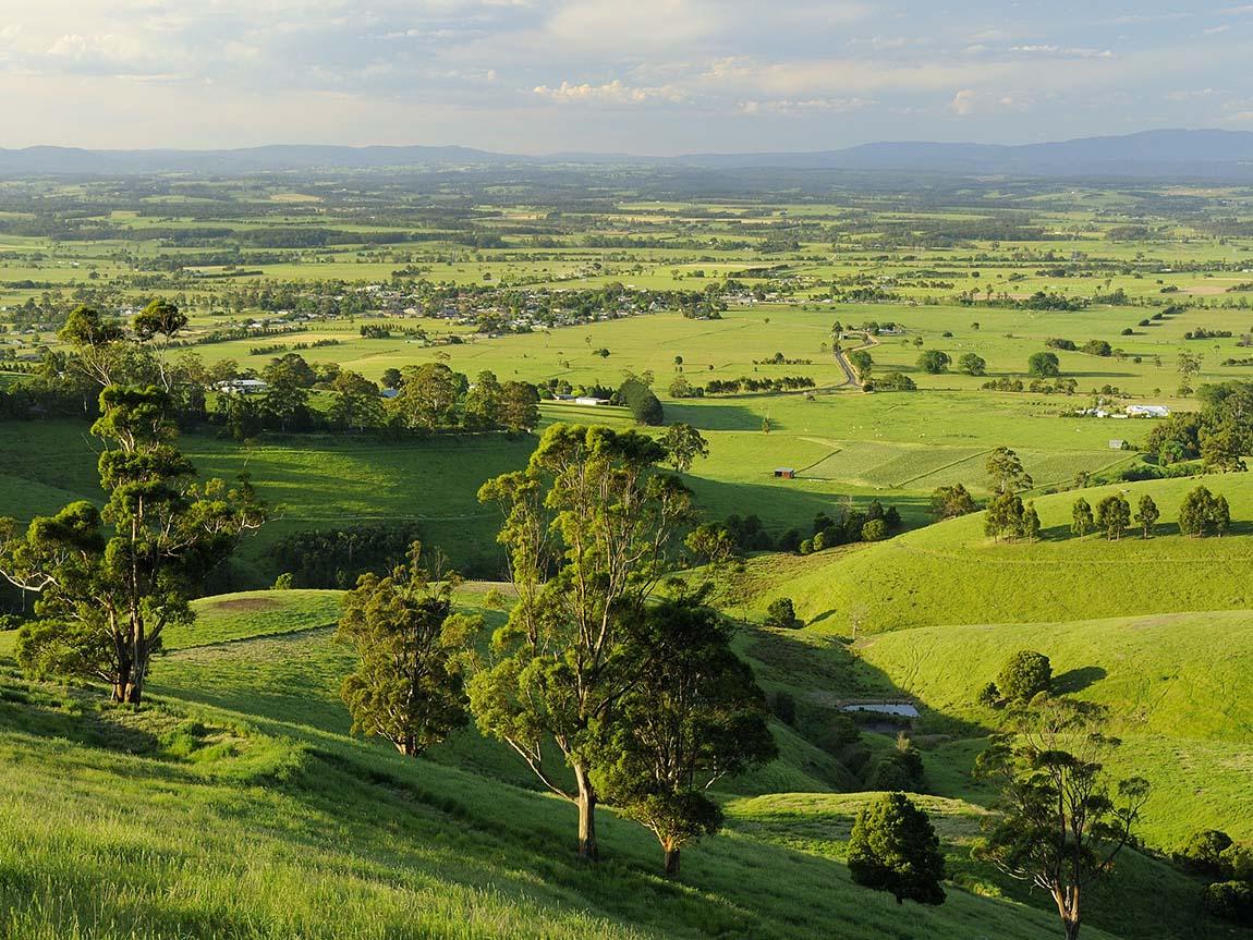 Lush farmland near Yarragon, Gippsland, Victoria